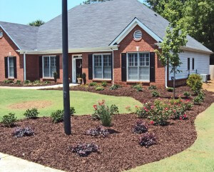 Expert residential landscape architecture in atlanta ga for Residential architects atlanta ga