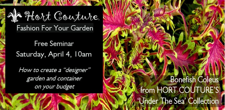hort couture Sat