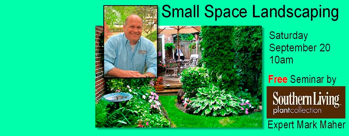 Small Space Landscaping
