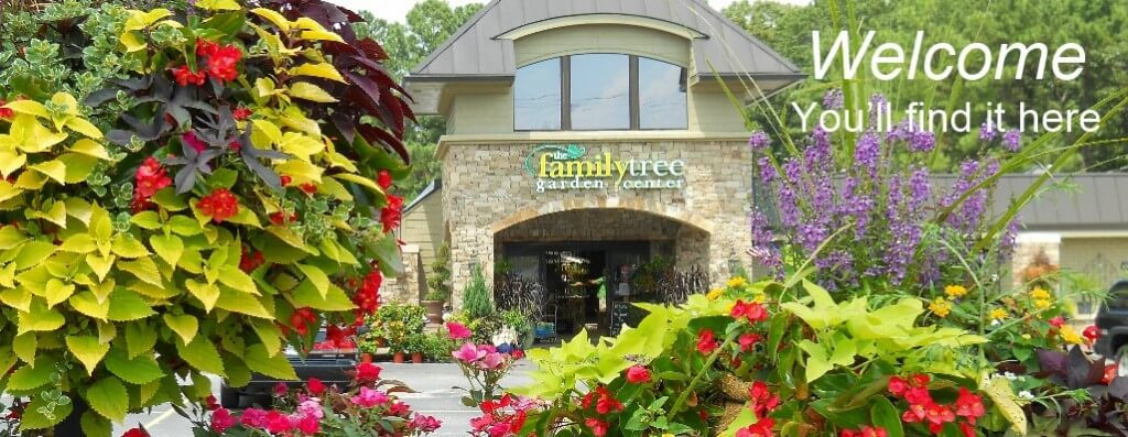 welcome to the family tree garden center
