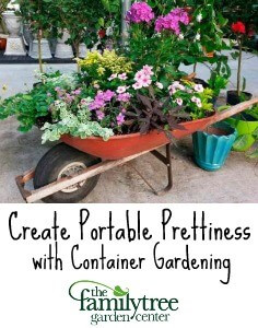 Container Gardening pin