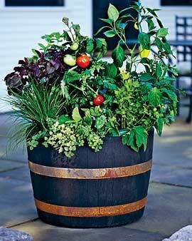 veggie pot