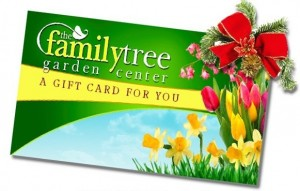 gift-card-sale-slider-1140x442