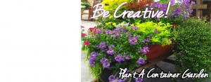 Be Creative with Container Gardens & Tips From Carmen Johnson!