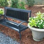 family tree container gardening