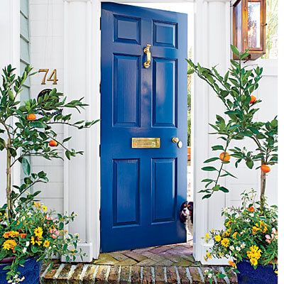 Curb Appeal: The Ultimate First Impression