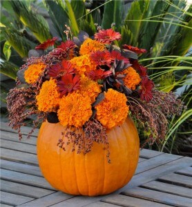 fall-pumpkin-vase