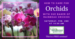 Orchid Class