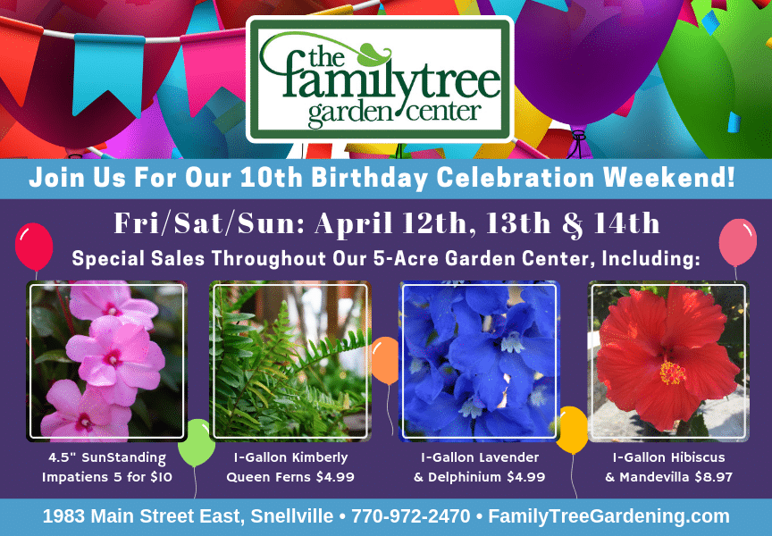 Tenth Birthday Sales Event